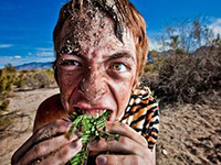 Team building survival Brimingham